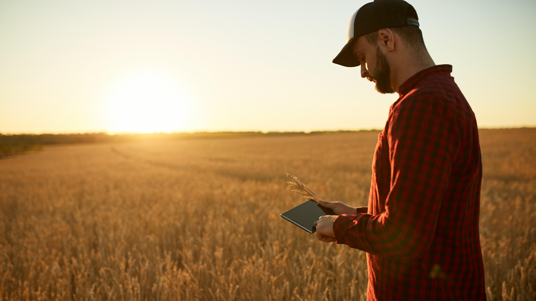 Bild Smart Farming